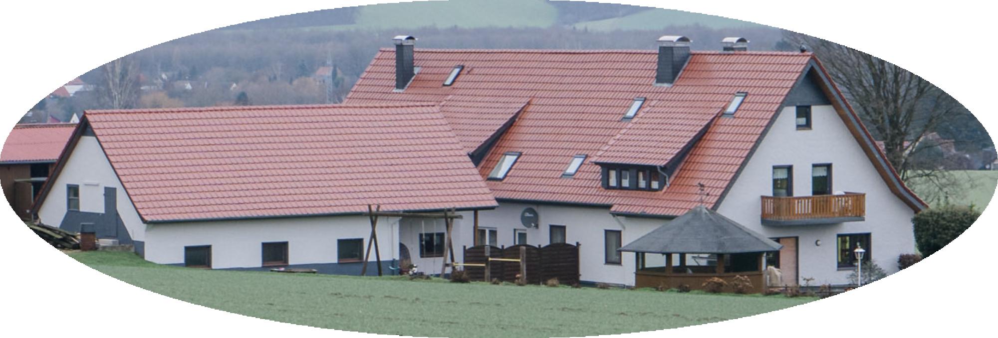 Bauernhof Pension Falk